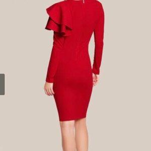 Dresses & Skirts - Bodycon Ruffle Long Sleeve Midi Women Dress